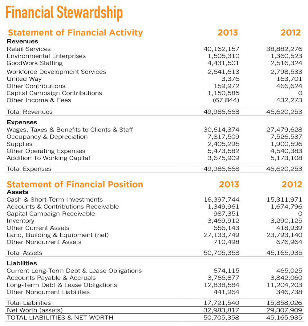 2013 Goodwill financial statement