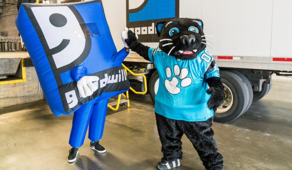 Carolina Panthers' Sir Purr volunteering at Goodwill
